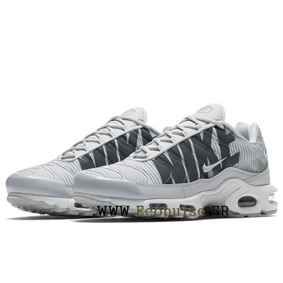 nike tn grise homme